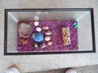 hermit tank with stand to make it easier for you to