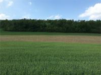 Perfect 11.863 acre building lot with awesome views!