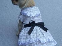Offering New with tags pet clothing all for under