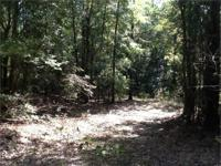 The Faulk Road Tract with 194 acres is an exceptional