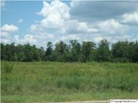 Home Subtype: Commercial Lot. Approx Lot Size: 9.700.