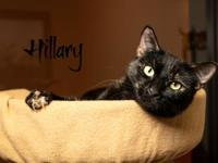 Hillary's story Hi, I'm Hillary. I'm one of the