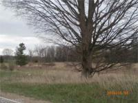 Perfect building site and location - 9 acres, paved