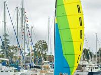 Hobie Cat Rotomolded Sailing Catamaran Series  Hobie