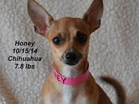 Honey's story Please contact Constance