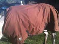 "Timberline by Toklat Horse blanket. 84""."