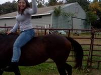 Horse boarding, lessons, training and riding that