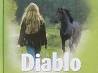 Liquidating a 30 year book collection. Diablo-The