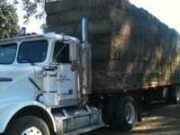 Williamson Hay Sales  New loads of alfalfa and orchard