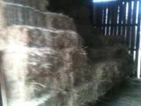 I have 1100 bales of quality horse hay. Nice bales