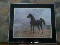 Beautiful Black Arabian Stallion print that has been