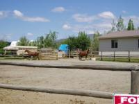 HORSE PROPERTY AND HOME FOR SALECommercial- Build- a