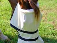 We are introducing our horse sun shade products! We