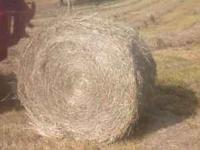 $30/bale for horse quality round bales. Delivery can be