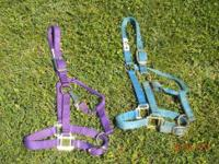 Brand New) Purple, Hamilton Brand Horse Halter (Small