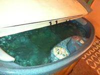 1 or 2 person hot tub. Everything works, in great