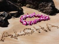Hawaii hotels. At www.HotelsInHawaii.us, we combine all