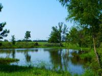 Approx 40 acres in sought after New Waverly. Gorgeous
