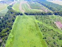 Over 60 acres of land! Pasture full of wonderful