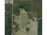 350+/- total Acres; 80 +/-acres of row crop land &