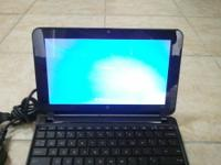 The netbook is in absolute prestine condition like new