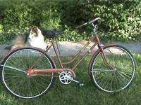 old fashioned single speed ladies bike with coaster