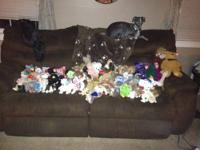 Huge 229 lot of TY Beanie Babies, all rare with tags!