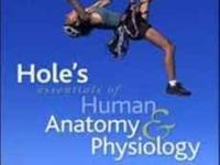 Hole's essential of Human Anatomy & Physiology. (David