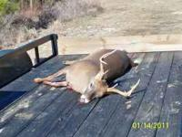 NEED (2) MEMBERS, TOTAL 10. HAVE 1200 ACRE STILL HUNT