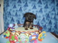 Hunter is a wonderful little boy,loves to cuddle and