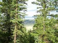 I am going to sell my 2 acre Colorado Mountain Land