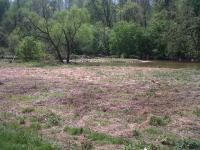 SEARCHING AND FISHING RETREAT. OVER 8 ACRES WTIH