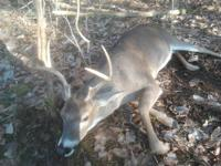 we are a hunting club an have a 3 openings left the
