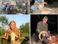LIMITED TIME DISCOUNT HUNTS   Texas Hill Country ,