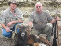 TROPHY SHEEP HUNT Large Private Ranches lodging on