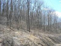 6.2 Acre woody system of ground just 10 minutes to