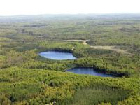 The Twin Lakes Property is 14,000 acres of timberland