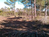 I have a 100 acre tract of land that I have had cleared