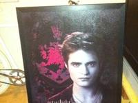 I have all my Team Edward frame's & bag's for sale to