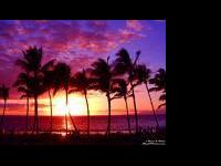 Description Island Adventure Aruba, Oahu, Maui, Jamaica