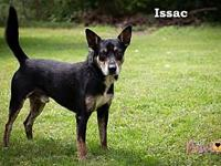 Issac's story You can fill out an adoption application