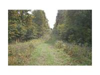 Legal Description:203.86 acres basically situated in