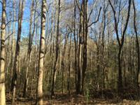 Gorgeous wood acreage. Excellent lumber and