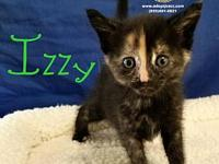 Izzy's story You can fill out an adoption application