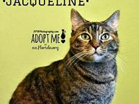 Jacqueline's story You can fill out an adoption