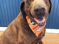 Jake's story Jake is currently in our care. All