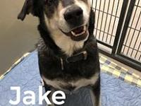 Jake 12030's story Jake is an adorable 3-5 yr old