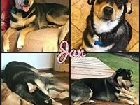 My story Jan is a super sweet young lady. She's approx.