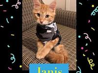 Janis Joplin's story Janis was rescued along with her