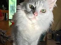 Jasmine-DEAF's story Jasmine is just three years old &